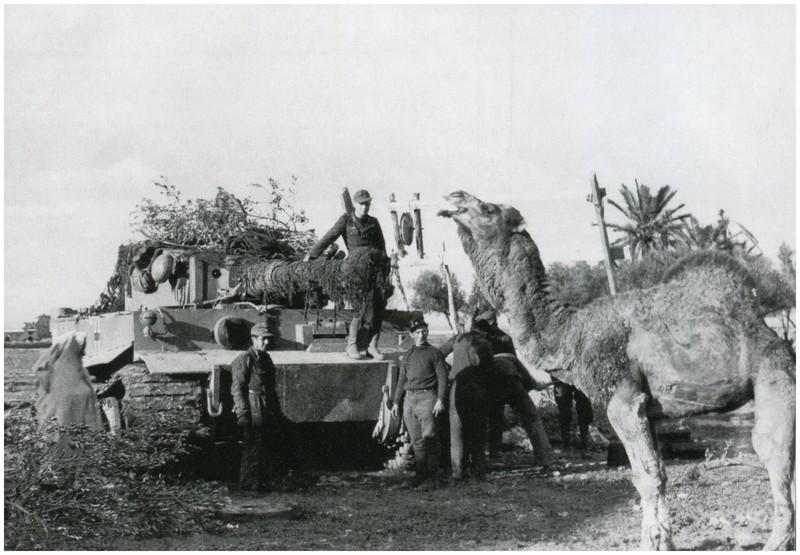 Tiger I du sPzAbt. 501 en Tunisie 1943 Tigerinr141spzabt501ent