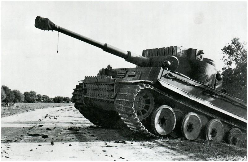 Tiger I du sPzAbt. 501 en Tunisie 1943 Oliveraies