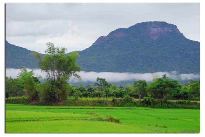 Làng quê Buchoadongque