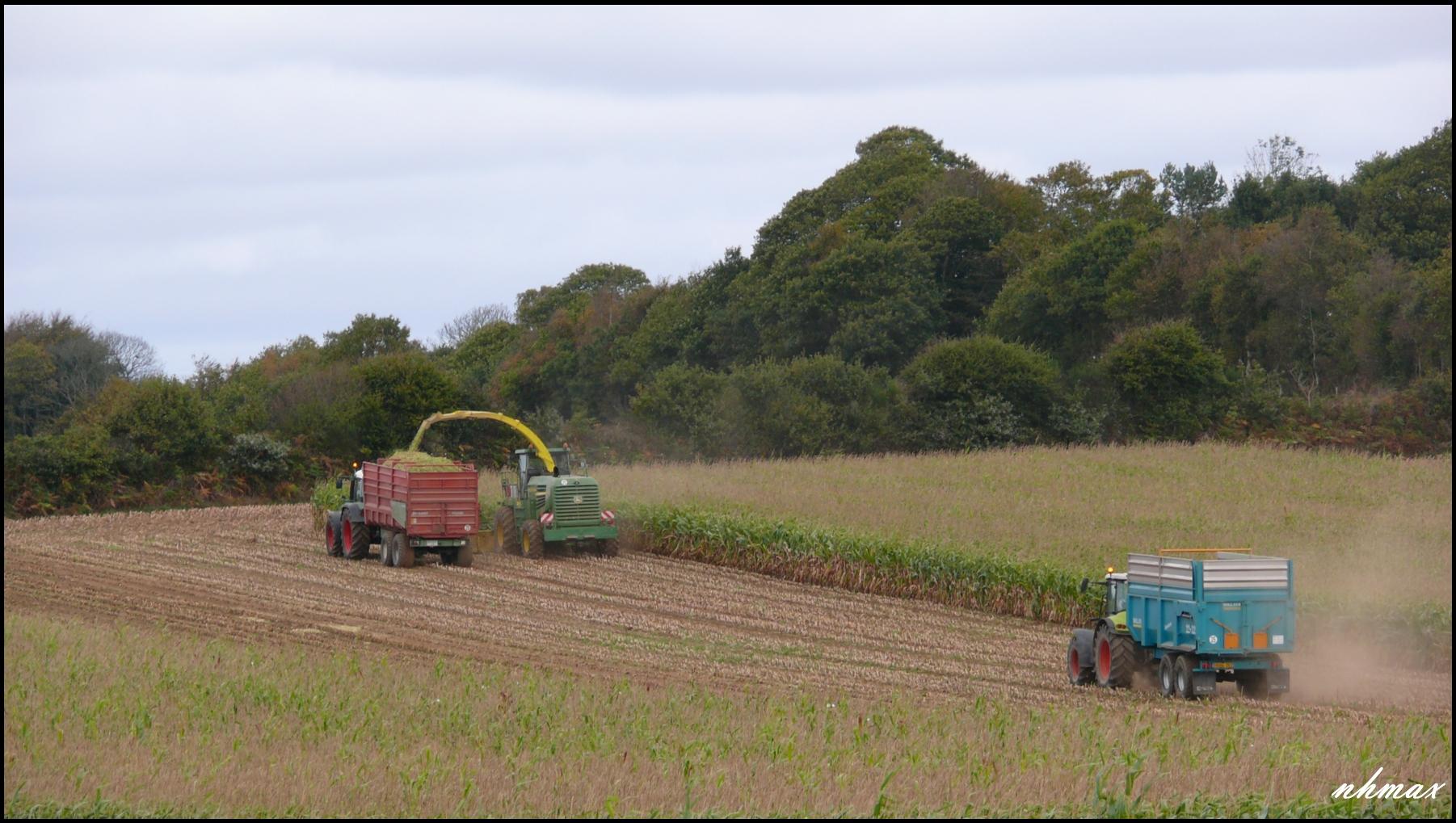 Ensilage de maïs 2011 P110059250
