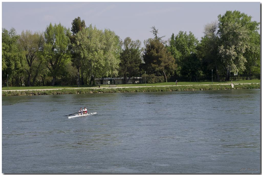 Photos de la rencontre Avignon du 14 Avril 2012 - Page 3 N03rameursap11025
