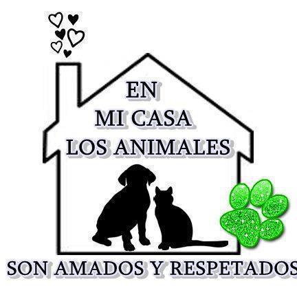 ANIMALITOS 1 - Página 2 31003840829719925755251