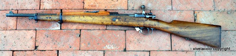 FN Mauser Dsc0754p
