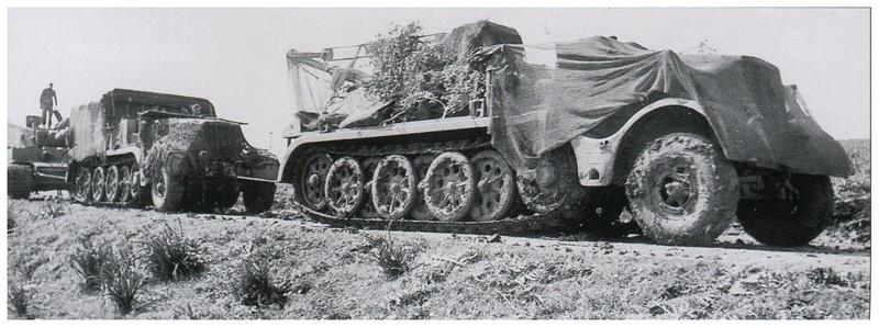 Tiger I du sPzAbt. 501 en Tunisie 1943 Tigerinr813spzabt501pri