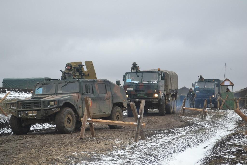 Armée Roumaine/Romanian Armed Forces/Forţele Armate Române - Page 6 90335116231620059430621