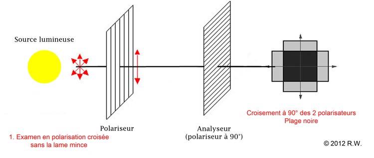 Les Teintes de polarisation des TS de météorites expliquées. Polariseuranalyseur1bis