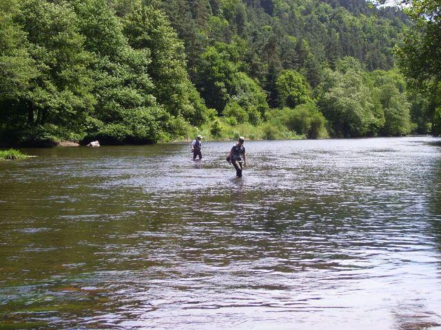 Rencontre sur l'Auvergne photos Page 7! - Page 6 1001777ee8