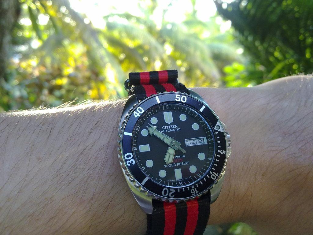 De retour de Guadeloupe, j'ai vu plein de belles choses, même des montres... 09112010723