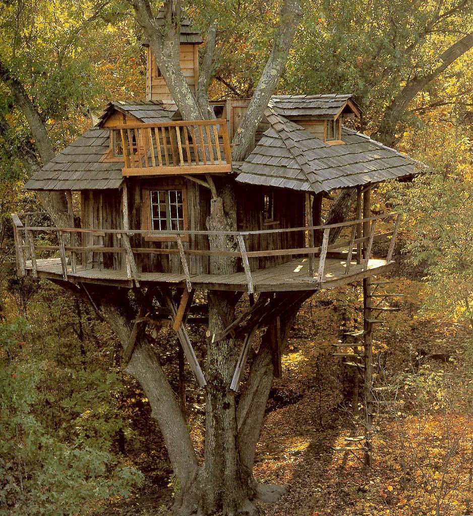 [IMAGENES] Casas de arbol Treehouses002s0oi