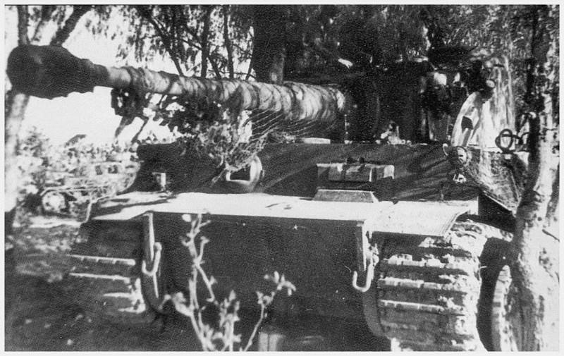 Tiger I du sPzAbt. 501 en Tunisie 1943 Tigerinr132spzabt5011er