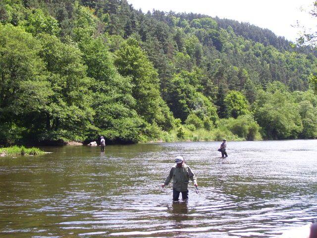Rencontre sur l'Auvergne photos Page 7! - Page 6 1001776nj0