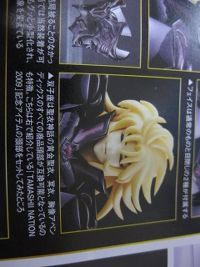 "[Marzo 2009] Tamashii Nation ""Japan"" (Appendix Saga Manga Color) - Pagina 6 25f4ugi.th"