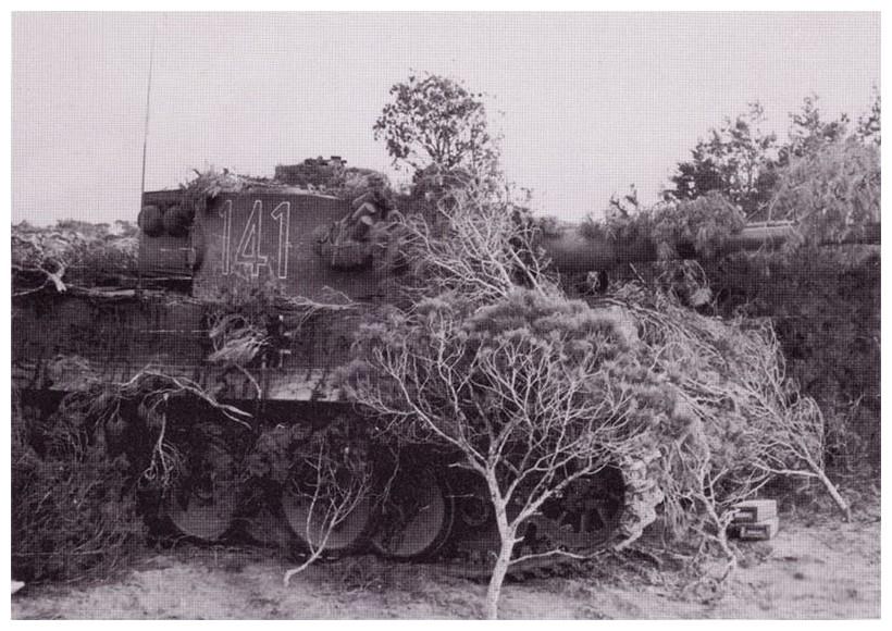 Tiger I du sPzAbt. 501 en Tunisie 1943 Tigerinr141spzabt501nor