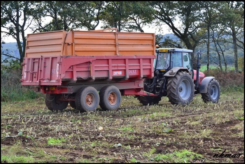 Ensilage de maïs 2011 Dsc0156fp