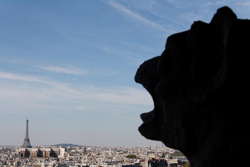 Chimères de Notre-Dame de Paris Img5271qh8