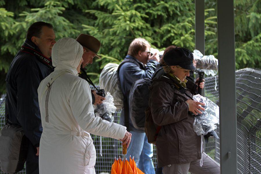 Sortie au Zoo d'Olmen (à côté de Hasselt) le samedi 14 juillet : Les photos d'ambiance Mg7783201207147d