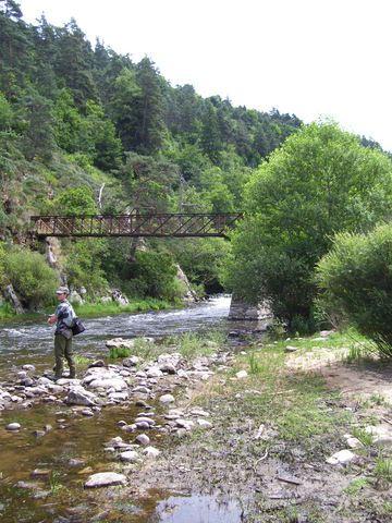 Rencontre sur l'Auvergne photos Page 7! - Page 6 1001751ee6