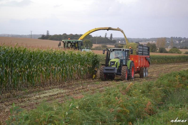 Ensilage de maïs 2011 Dsc00781600x1200