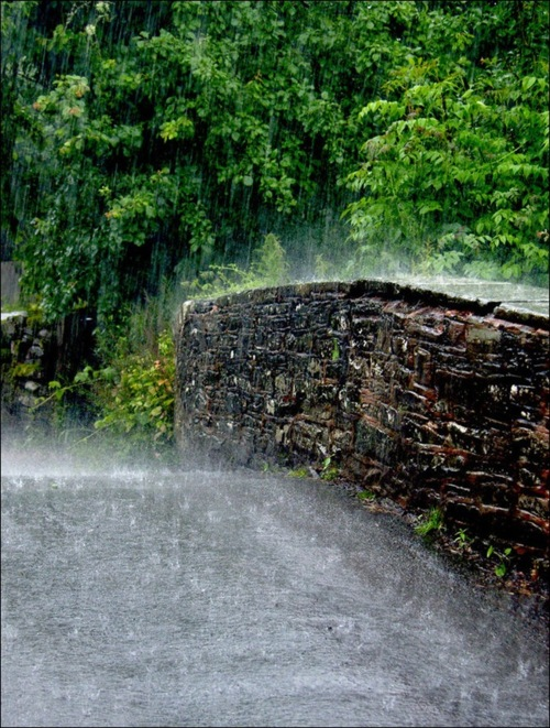 kiša.... - Page 2 0909bfc9975a24fdda6cdfc