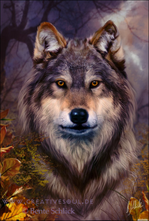 Le Déva des Loups Automnee