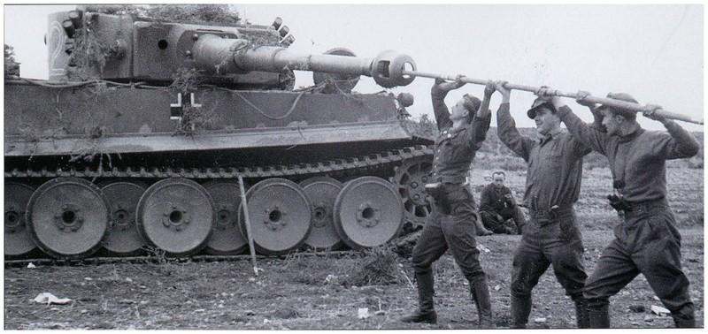 Tiger I du sPzAbt. 501 en Tunisie 1943 Tigerinr142spzabt501ent