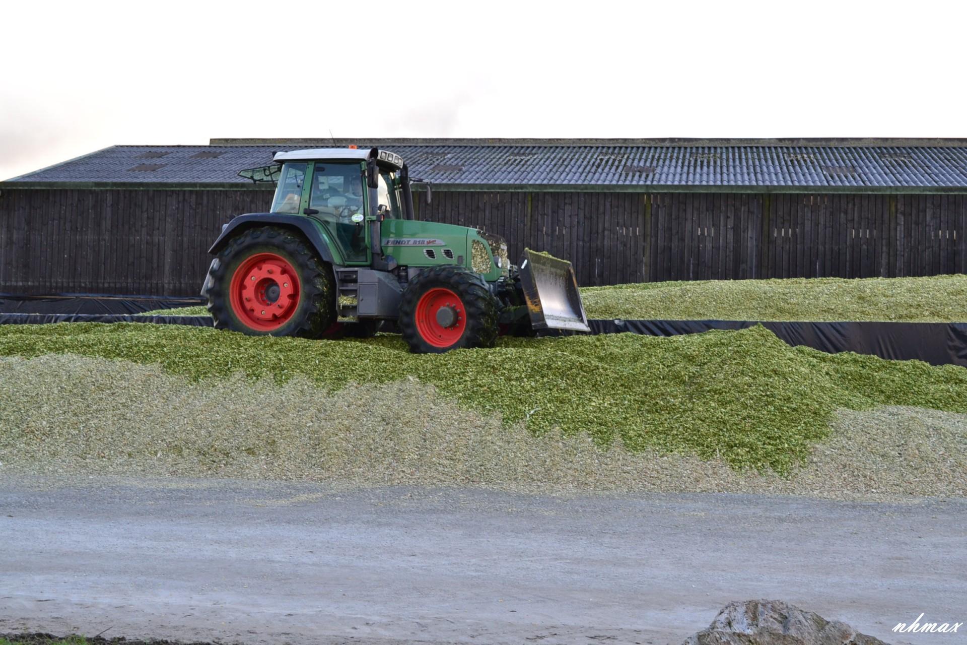 Ensilage de maïs 2011 Dsc01451600x1200