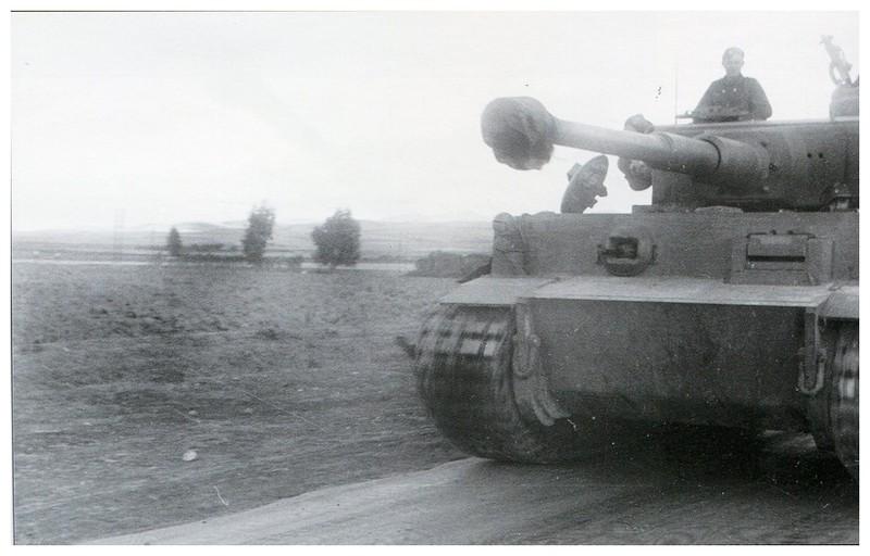 Tiger I du sPzAbt. 501 en Tunisie 1943 Tigerinr112spzabt501le1