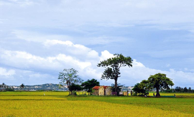 Làng quê Quehuong
