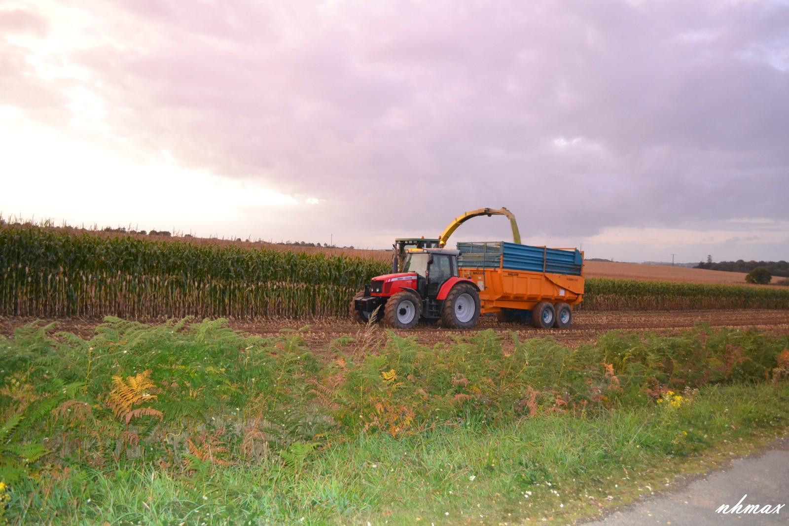 Ensilage de maïs 2011 Dsc00871600x1200