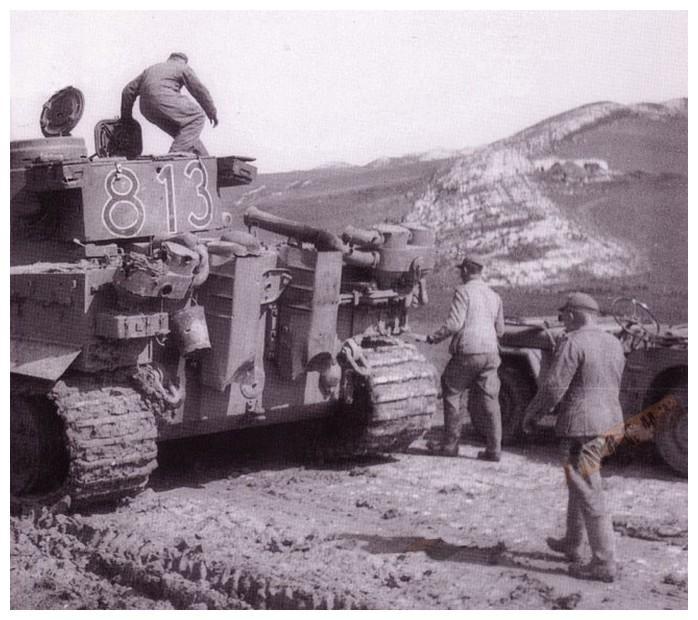 Tiger I du sPzAbt. 501 en Tunisie 1943 Tigerinr813spzabt501dev