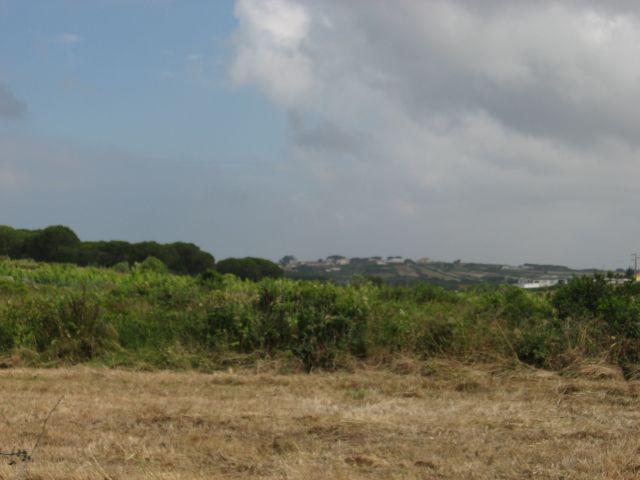 4x4 às Sardinhas no dia 20 de Junho de 2010 Img7687r