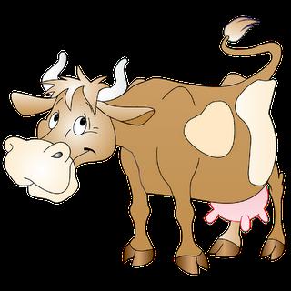 Vacas y Toros Dhdw