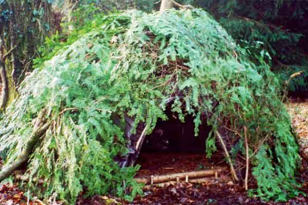 Que es lo que hacemos?...Supervivencia,Bushcraft,Campeo... Shelterl1
