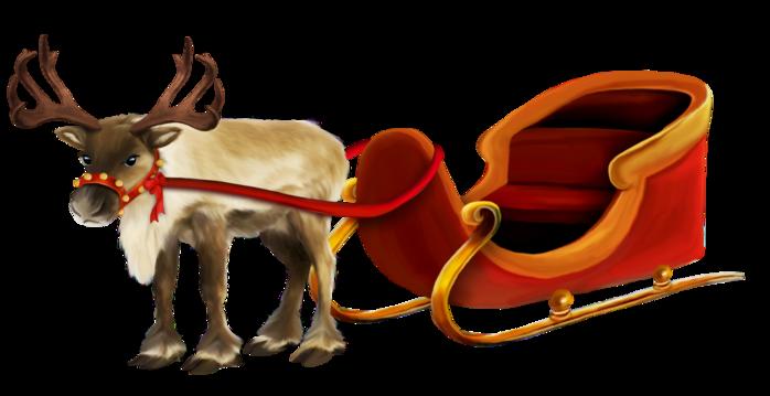 Animales de Navidad Mtiy