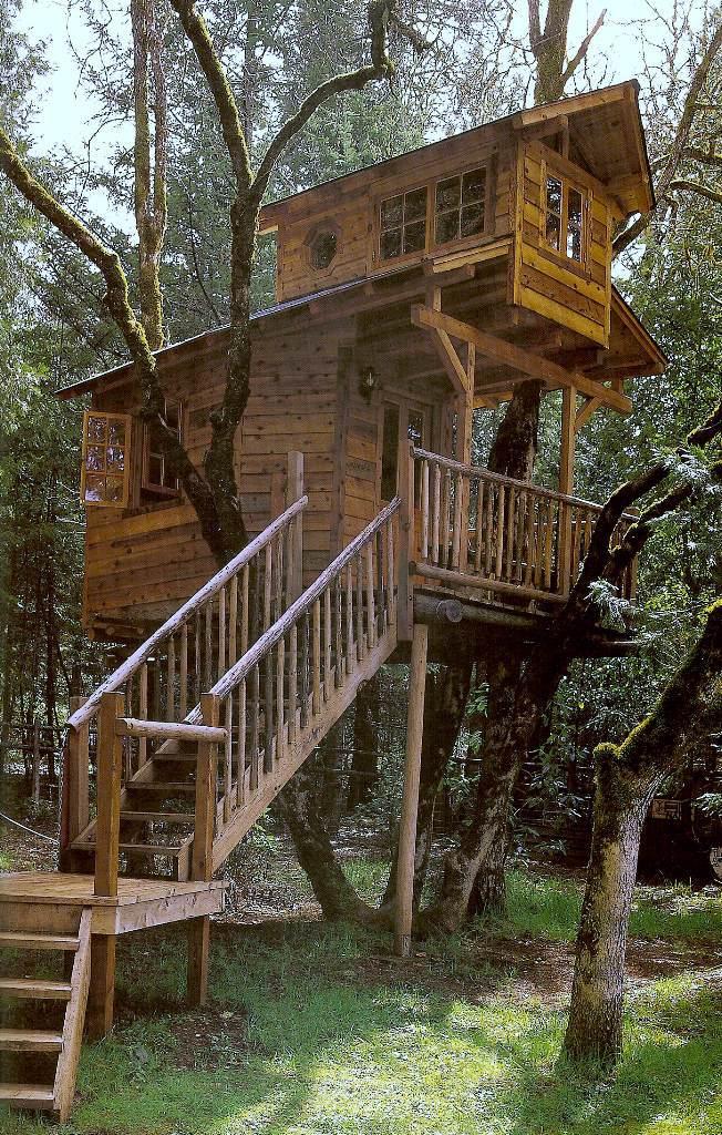 [IMAGENES] Casas de arbol Treehouses015s4jg