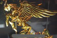 """[Marzo 2009] Pegasus God Cloth """"Recolor"""" - Pagina 4 312742941707e57d7b08bvqfw7.th"""