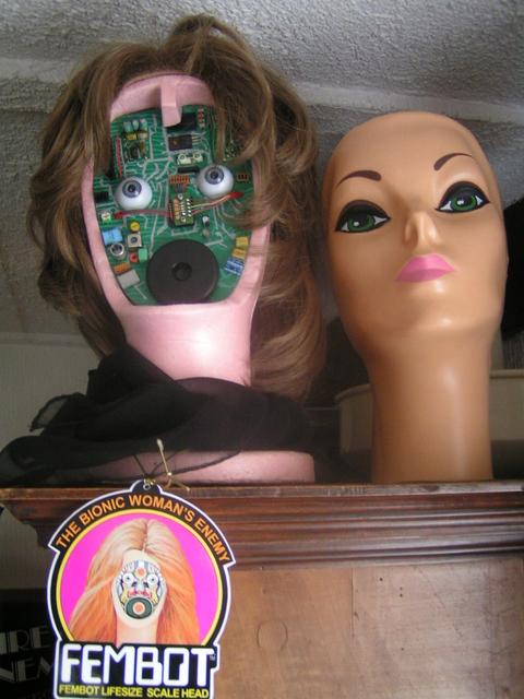 Ma collection Steve Austin et Super Jaimie Pict0353