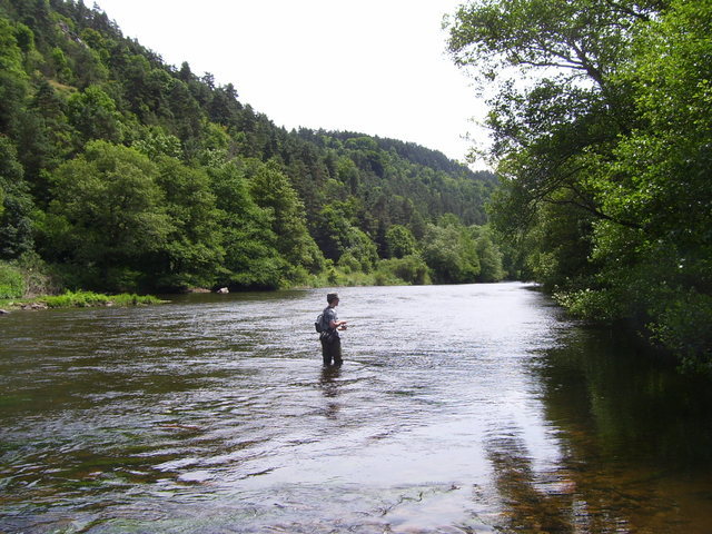Rencontre sur l'Auvergne photos Page 7! - Page 6 1001757cj3