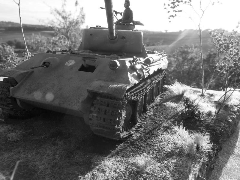 PANTHER sd.kfz171 - Tamiya - 1/35 Imgp30442