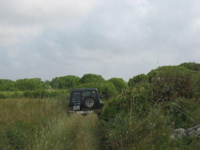 4x4 às Sardinhas no dia 20 de Junho de 2010 Img7661r