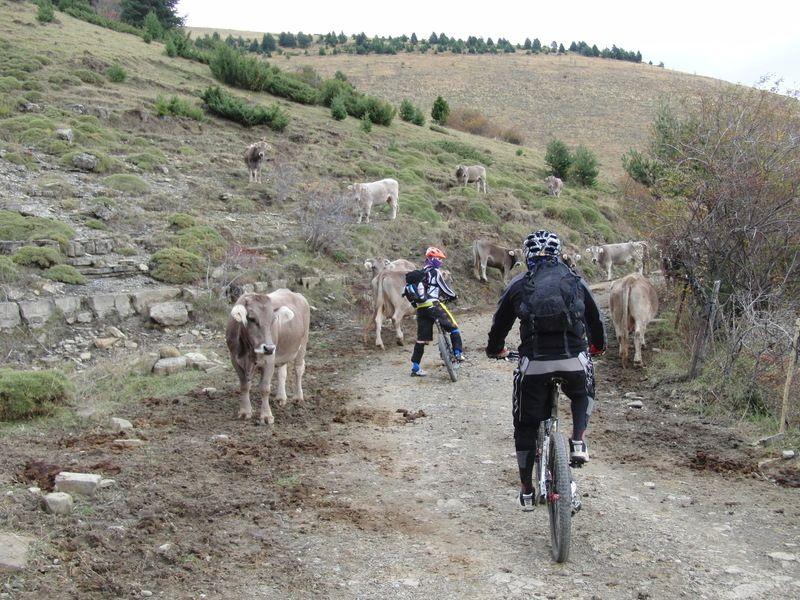 Kdd endurera en Ainsa (HUESCA) - Página 2 Cimg2589e