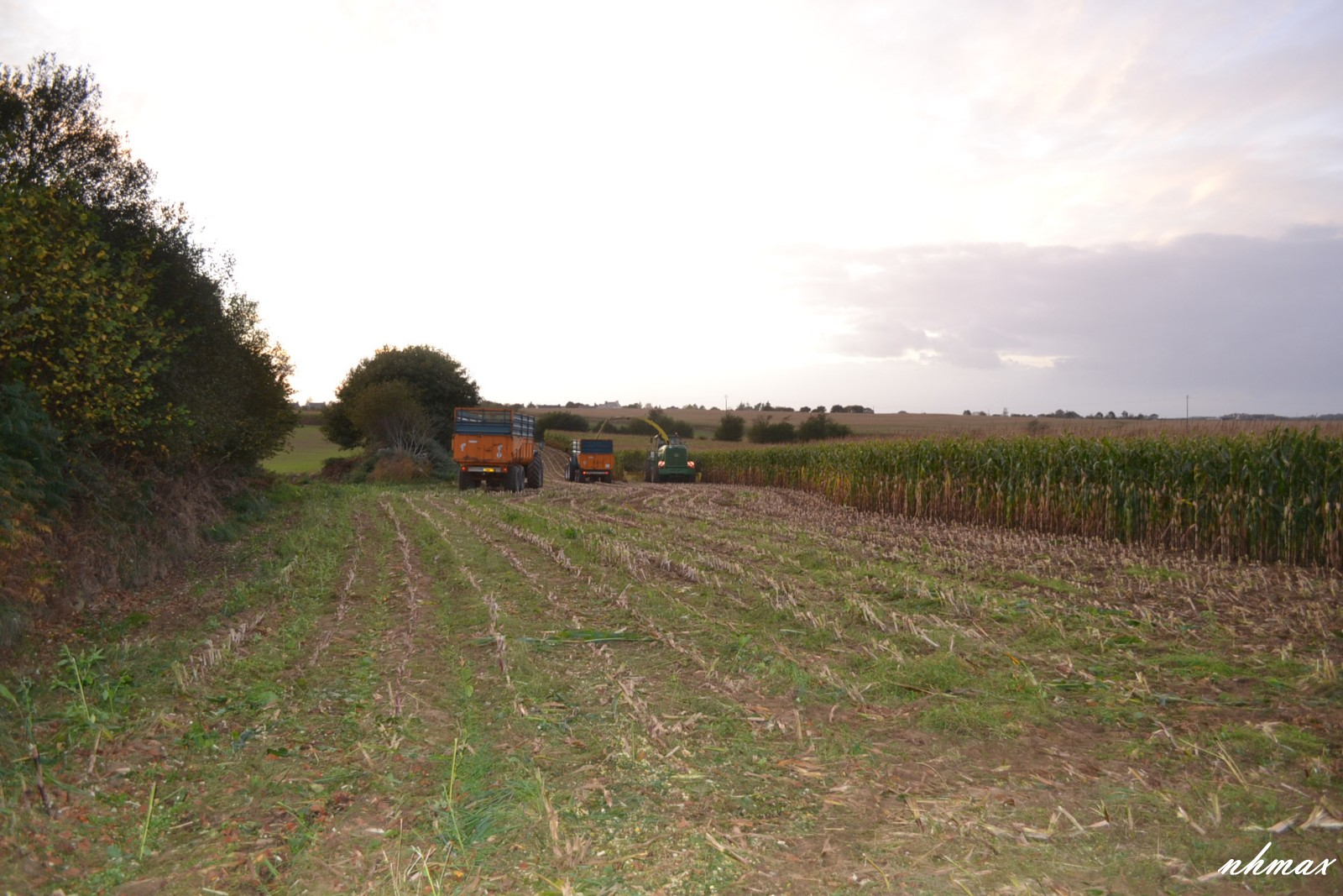 Ensilage de maïs 2011 Dsc00831600x1200