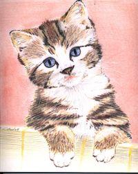 Mes dessins, ma passion, ma vie Juin2003chat0jg.th