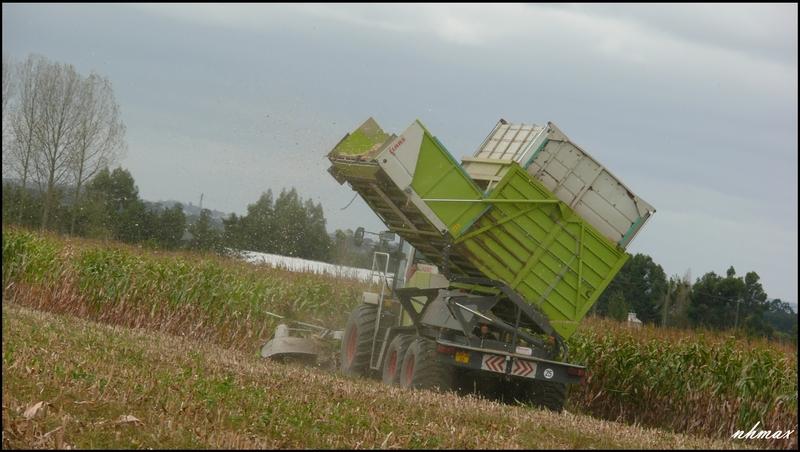 Ensilage de maïs 2011 P1100747