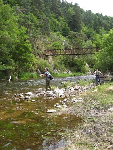 Rencontre sur l'Auvergne photos Page 7! - Page 6 1001748cn6