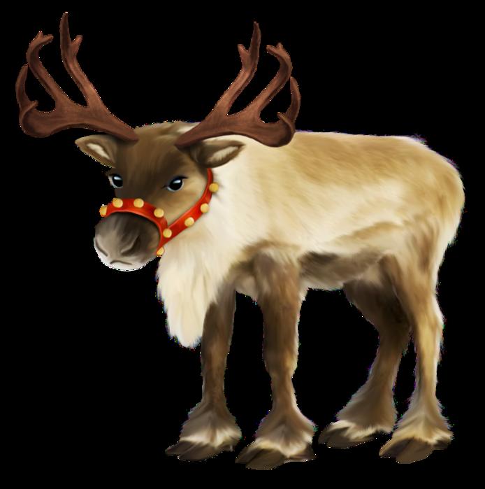 Animales de Navidad J3or