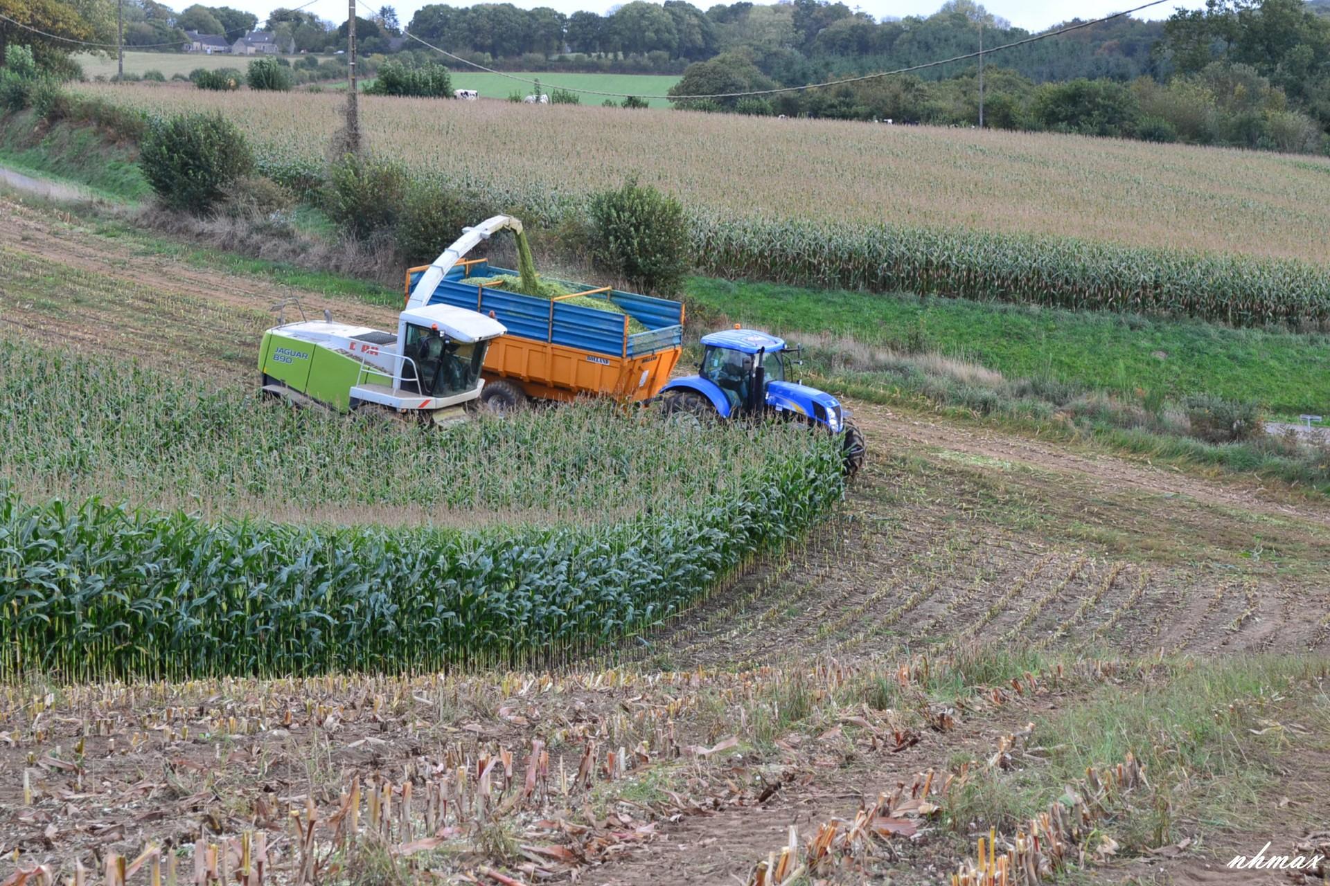 Ensilage de maïs 2011 Dsc01411600x1200