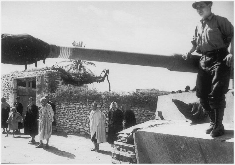 Tiger I du sPzAbt. 501 en Tunisie 1943 Eldjem7victoires