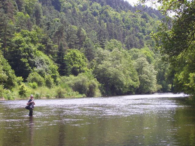 Rencontre sur l'Auvergne photos Page 7! - Page 6 1001771cj4