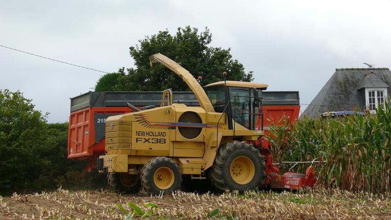 Ensilage de maïs 2011 P1100767